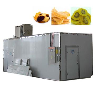 Dw Mesh-Belt Strip Ribbon Fresh Vegetables Fruits Sea Food Fish Drying Dryer Machine